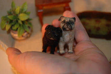 1/12 scale dollhouse miniature set of custom pugs by carine-cote