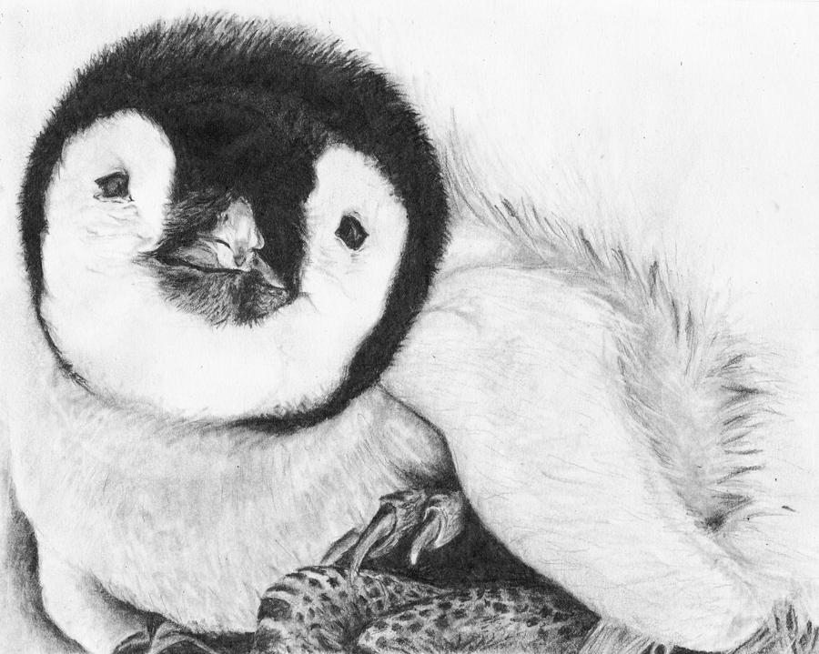 Baby penguin art - photo#23