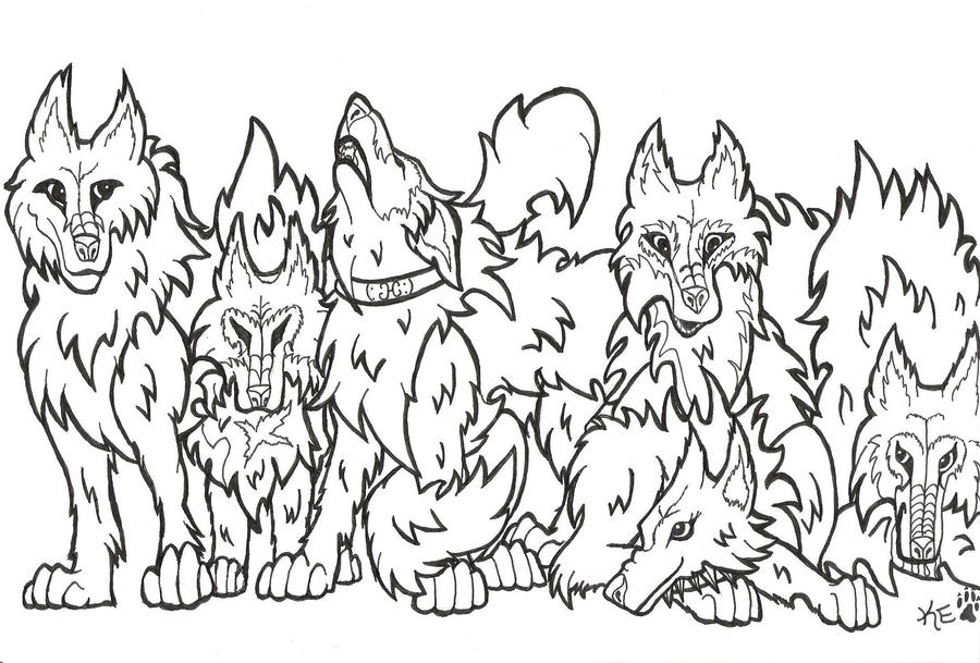 wolf rain coloring pages - photo#42