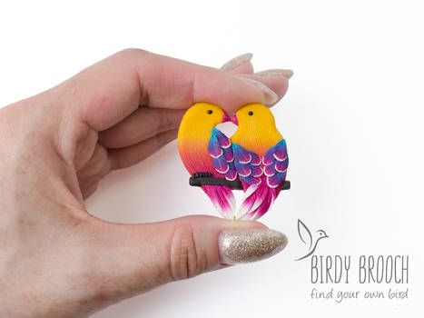 Pair of birds Alan and Holly brooch pin