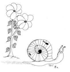 Snail by danielbastion