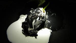 Merged Rose (angle 2)