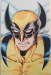 Wolverine! - Marvel