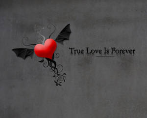 True Love Is Forever....