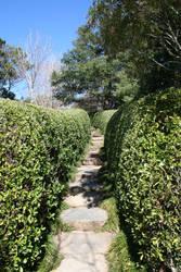 Pathway by Aragwen-stock