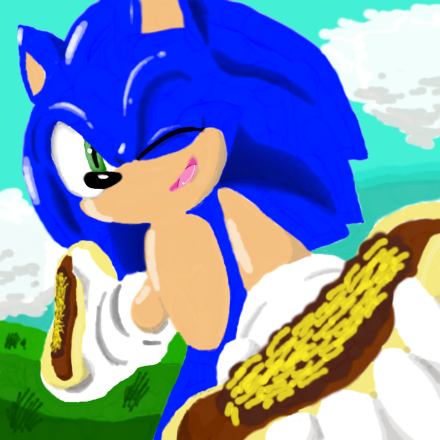 One Hour Sonic:Chillidogs by sonicmask2