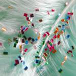 Specks of Color II