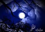 Moon Sky Practice