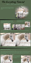 The Everything Tutorial pt 3- Horse Prep