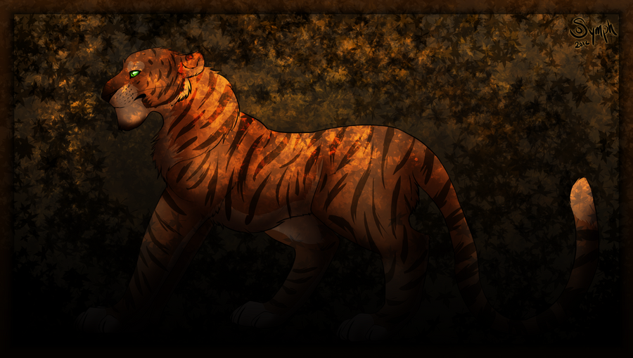 Tiger by oSymphonyx