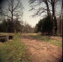 Dirt Road-Holga by effing-stock