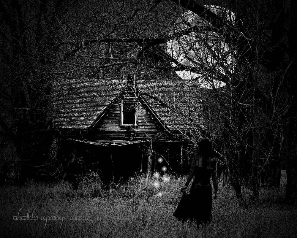 MIDNIGHT by RareEarthGallery
