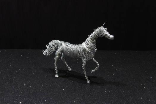 Cavalo arabe - Arabian horse