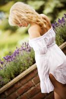 Lavendel by Dyxtreme