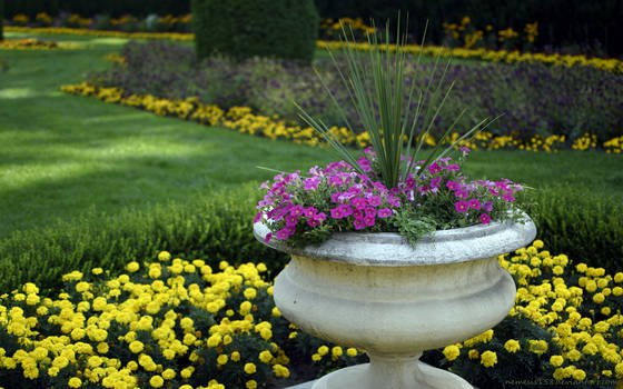 Regal Garden