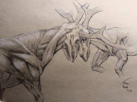 Deer fight by TomaszRewak