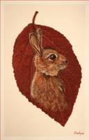 Rabbit warren by oxalysa