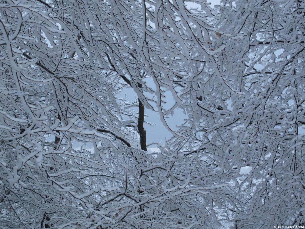 Winter 0010 by Goppo713
