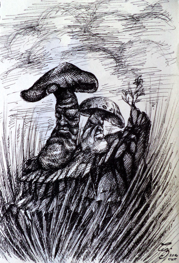 Mushrooms by WolfGrin1
