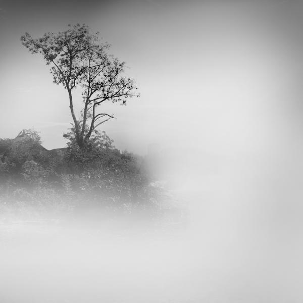 Silence by Erinti