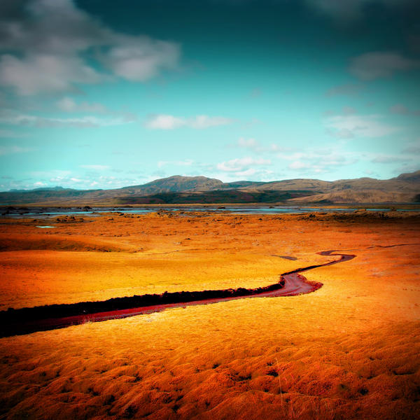 Solitary Ground by Erinti