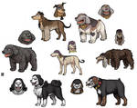 Blackbeard dog crew -UPDATE-