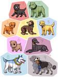 Strawhat dog crew