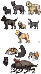 Dorohedoro doggies II by emlan