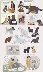 Sekiro Dogs by emlan