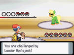 You are challenged by Leader Applejack!