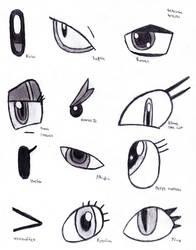 Twelve Eyes Study