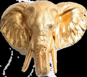 gold elephant frame