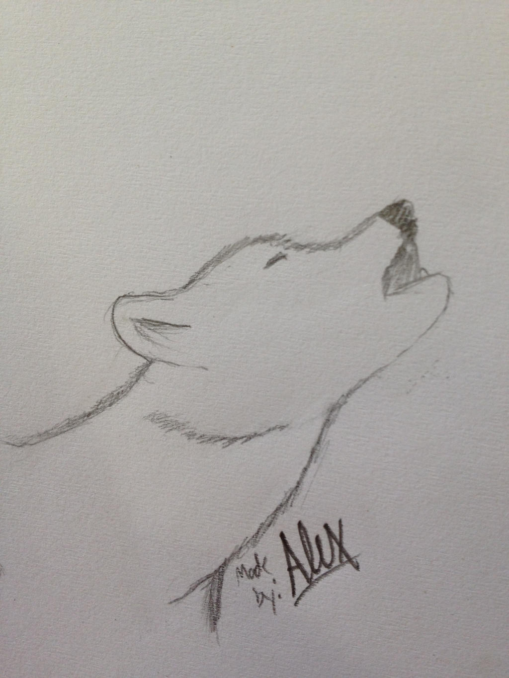 Howling wolf drawing by victorvoltfan1