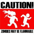 cation zombies may be flamable by death-1234279