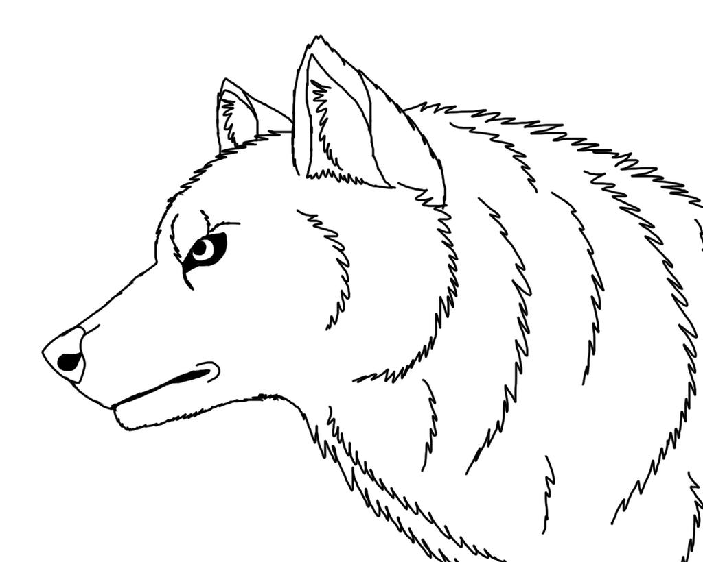 Line Drawing Wolf Head : Free wolf head line art by pitthekidicarus on deviantart