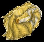 Golden by semper-n-aeternum