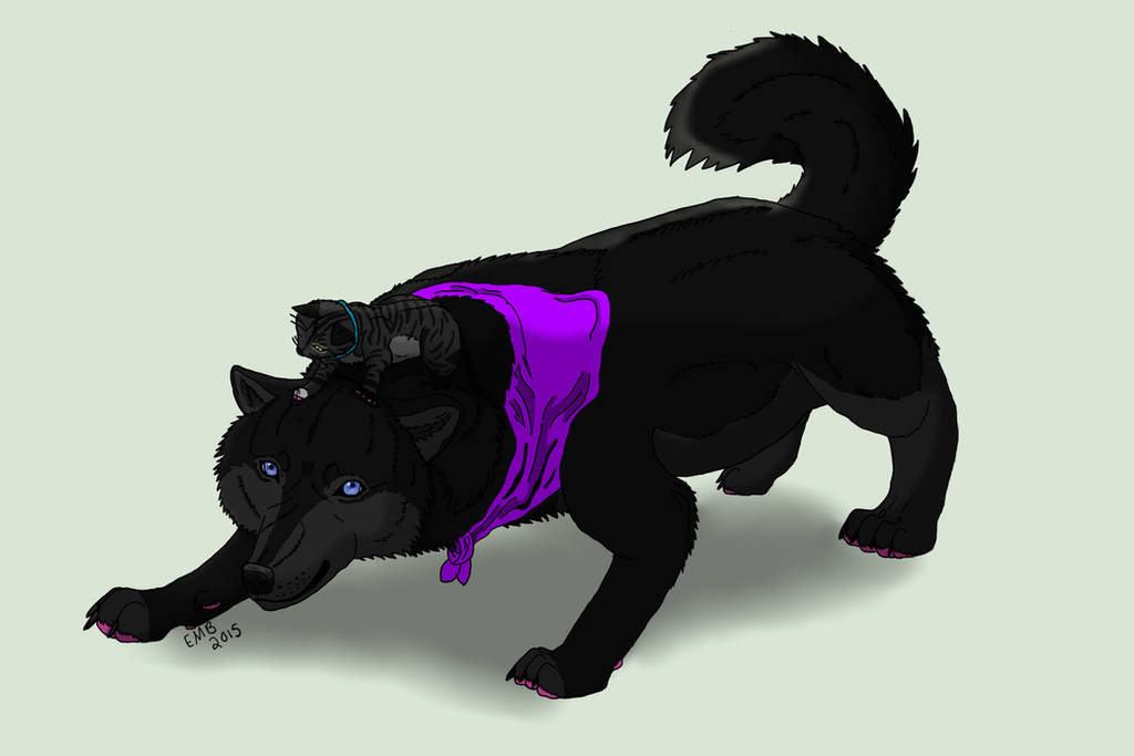 Kokutan-Wolf's Profile Picture