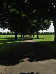 Doncaster Town Fields 3