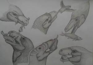 Dromaeosauridae part1