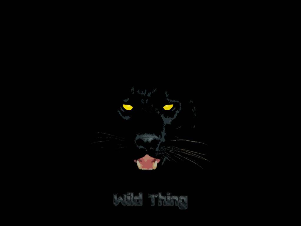 black puma wallpaper