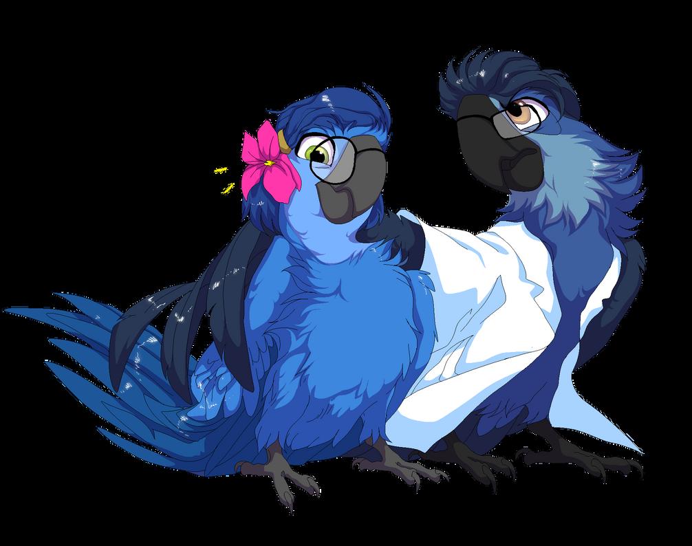 Rio Deviantart: In The Macaw's Skin By RudyArarauna On DeviantArt