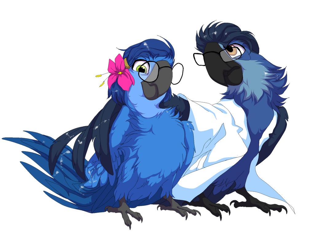 In The Macaw's Skin By RudyArarauna On DeviantArt