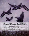 Painted Raven Stock by LostMemoryOfADream