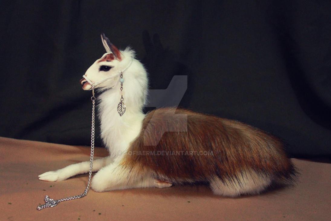 Lama by SofiaERM
