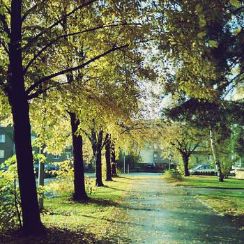 Autumn by LisbethFleur
