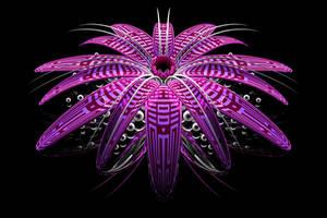 Raspberry Bloom by TylerXy