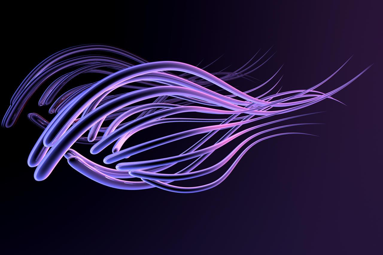 The Fish by TylerXy