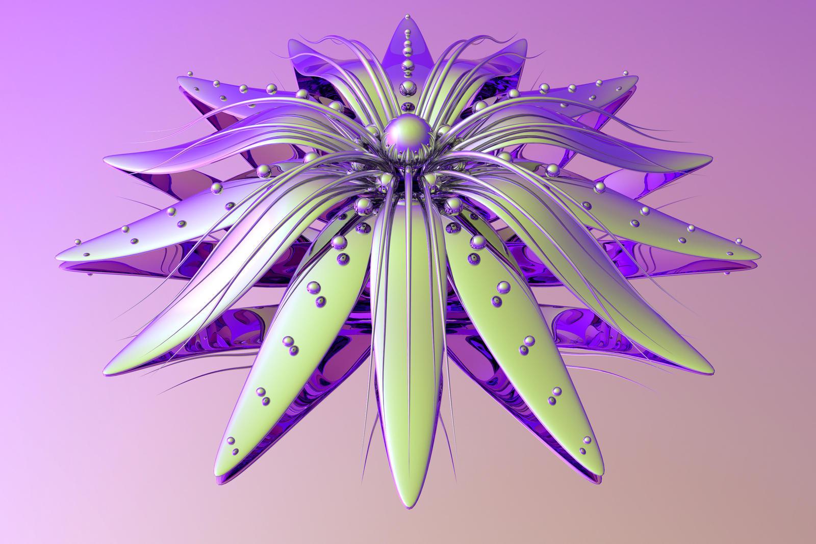 Kawasaki Flower by TylerXy