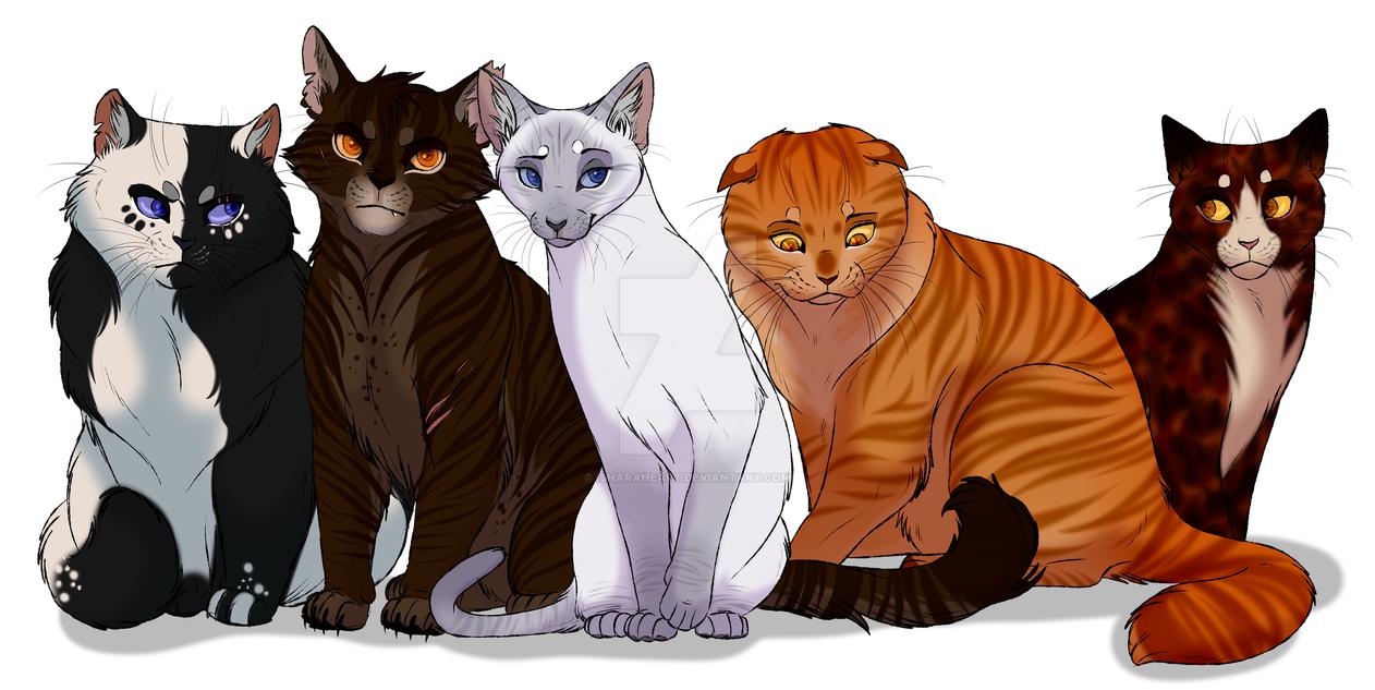 Warrior Cats Vid Clan