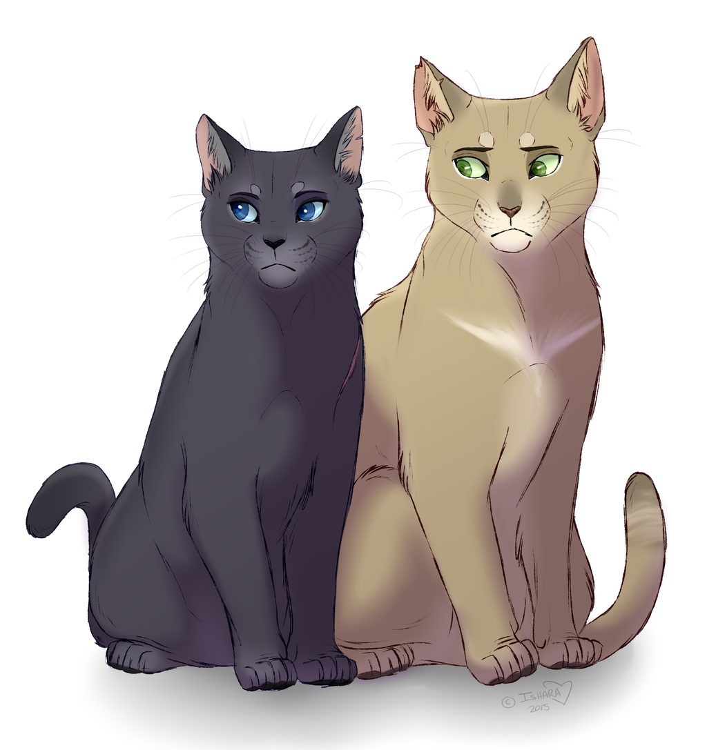 Warrior Cats Canon Characters